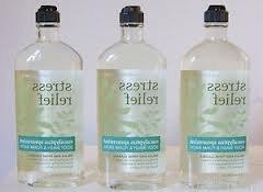 Bath & Body Works Arom Aromatherapy Eucalyptus Spearmint Foa